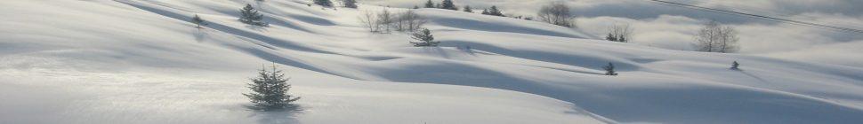 The Snow Ski
